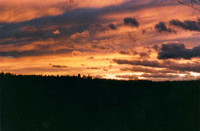 Titelbild des Albums: Abenddämmerung
