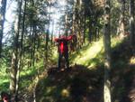 Spechtensee 2004 Auf ca.35m auf eine Gämse vor einer Felswand!