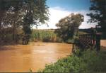 Titelbild des Albums: Unwetter 1998